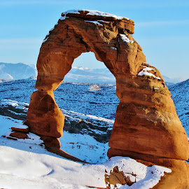 Delicate Arch in Snow by Jean-Francois Gelinas - Landscapes Deserts ( snowfall, famous, arch, america, stone, beauty, landscape, frozen, usa, entrance, sky, nature, cold, arc, snow, weather, park, beautiful, white, snowy, tourism, scenic, snowing, landmark, winter, season, blue, delicate, arches, background, outdoor, outdoors, scene, view, natural )