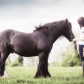 Love & Trust by Ian Taylor - Animals Horses ( affection, pony, girl, horse, land, lady, black )