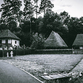 Patriarchal Village by Alexandra Gogu - Landscapes Travel ( countryside, village, romania, travel, rural )
