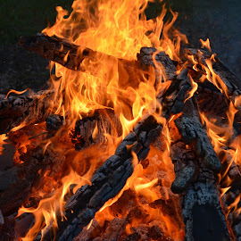 fire wood being consumed by Raymond Earl Eckert - Abstract Fire & Fireworks