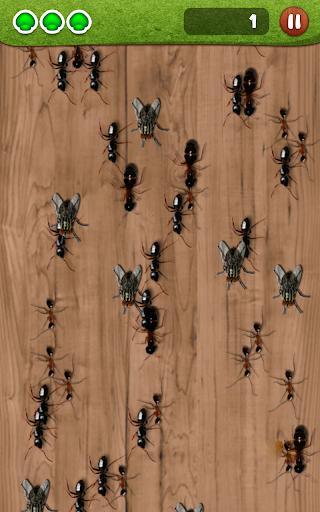 Ant Smasher by Best Cool & Fun Games screenshot 11