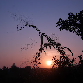 Sunset by Amit Suvera - Landscapes Sunsets & Sunrises