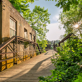by Kevin Esterline - Buildings & Architecture Bridges & Suspended Structures ( green, historical, bridge, river, sun )