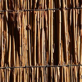 Vertical Reeds background texture by Bryan Wenham-Baker - Abstract Patterns ( vertical, vertical canes, texture, textures, vertical screen, backgrounds, background, canes )