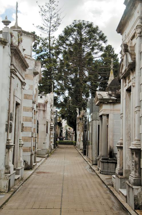 One of Cementerio de la Recoleta's many atmospheric pathways, lined with elegant tombs