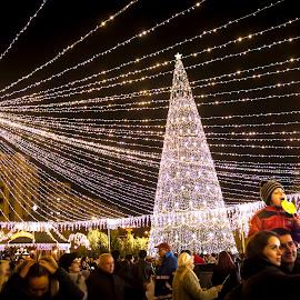 by Daniel Grecu - Public Holidays Christmas (  )