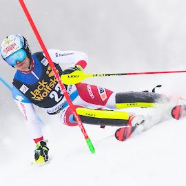 Loic Meillard (SUI) by Urban Meglič - Sports & Fitness Snow Sports ( 5dmk4, canon, fis, ski, skiing, worldcup, slalom, sport, vitranc cup, rossignol, race )