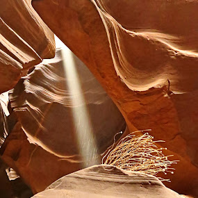 Antelope Canyon Light Beam by Nancy Young - Landscapes Caves & Formations ( formations, canyon, landscape, light,  )