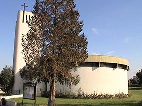 photo de Saint Dominique Savio