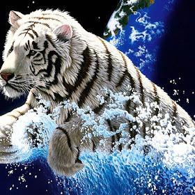 desktop-year-of-the-tiger.jpg