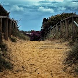 Pathways by Aditya Perdana - Nature Up Close Sand