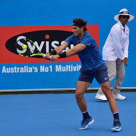 Raffa by Chris Wilson - Sports & Fitness Tennis ( concentration, melbourne, action, sport, tennis )