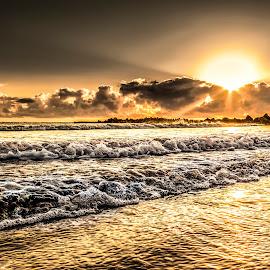 Tartaruga Beach at Dawn.. by Rqserra Henrique - Landscapes Beaches ( brazil, dawn, waves, natal, rqserra, beach, golden,  )