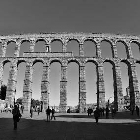 The Bridge by Alexandre Rios - Buildings & Architecture Architectural Detail ( black and white, segovia, monument, cityscape, roman, construction, photography, spain )