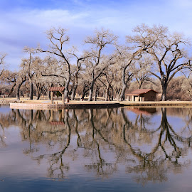 Sandia Lakes West by Shawn Thomas - City,  Street & Park  City Parks ( reflection, park, lake, fishing, scenic,  )