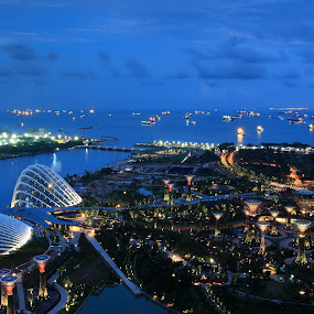 Gardens by The Bay by Roni Terisno - City,  Street & Park  City Parks ( bay, waterscape, travel, garden, singapore )
