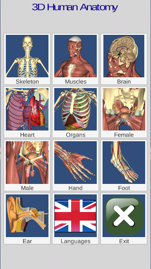 3D Anatomy Screenshot