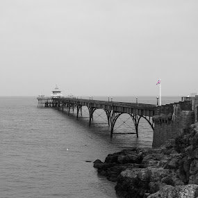 Clevedon Pier by Andrew Robinson - Buildings & Architecture Bridges & Suspended Structures ( somerset, clevedon pier, clevedon, pier )