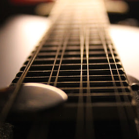 Mandolin Strings with Pick by Daryl Peck - Artistic Objects Musical Instruments ( music, up close, novice, upclose, dark, mandolin, strings, instrument, bluegrass, light,  )