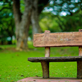 by Simon Yue - City,  Street & Park  City Parks