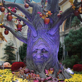 Spooky Tree, Bellagio, 2011. by Dee Haun - Artistic Objects Other Objects ( las vegas, other objects, bellagio, tree, blue, v3406e1, nevada, spooky, floral display, 2011, artistic objects )