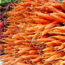 Summer Bounty by Kim Jones - Food & Drink Fruits & Vegetables ( orange, fresh, roots, vegetables, carrots, veggies )
