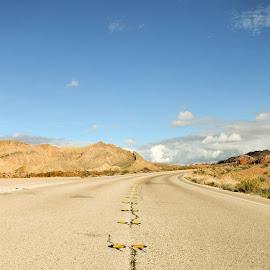 Lone road by Krystle Schwartz - City,  Street & Park  Street Scenes