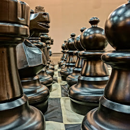 Your Move by Barbara Brock - Artistic Objects Toys ( leading lines, chess set, large board games, board games, chessmen )