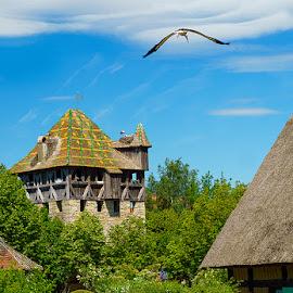 Ecomusée d'Alsace  by Zdenka Rosecka - Buildings & Architecture Public & Historical
