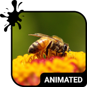 Working Bees Animated Keyboard APK for Lenovo