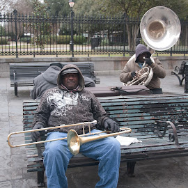 Jackson Square Musicians by Michael McMurray - People Musicians & Entertainers ( new orleans, tuba, jazz, park bench, french quarter, jackson square, musician, trombone )