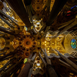 Look up to the sky by Marius Novac - Buildings & Architecture Places of Worship ( amazing, gaudi, church, architecture, barcelona, spain )