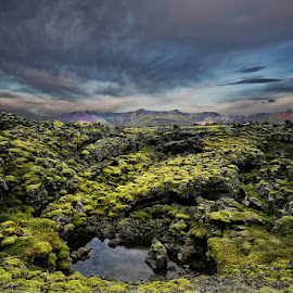 Natural Green Carpet  by Þorsteinn H. Ingibergsson - Landscapes Prairies, Meadows & Fields ( clouds, iceland, sky, nature, lava, moss, structor, landscape )