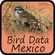 Bird Data - Mexico Bird Data - Mexico 1016 Icon