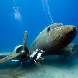 Flying and Diving by Rico Besserdich - Transportation Airplanes ( diver, dakota, blue, underwater, airplane, scuba, sea, ocean, deep )