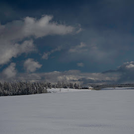 IN THE DISTANCE by Alice Artime - Landscapes Weather ( winter, cold, winterscape, snow, landscape )