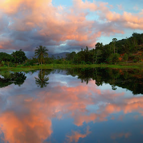 Reflection of sunset colored clouds with trees and hills at a lake in Borneo, Sabah, Malaysia by Macbrian Mun - Landscapes Waterscapes ( yellow, travel, backdrop, borneo, sabah, sky, nature, tree, weather, light, orange, wallpaper, horizon, malaysia, lake, season, scene, trees, view, natural, golden, calm, reflection, colorful, tropical, beauty, landscape, spring, sun, mirror, clear, tranquil, sunny, dramatic, asia, cloudy, gold, evening, water, clouds, peaceful, beautiful, cloudscape, scenic, red, blue, color, sunset, background, outdoor, sundown, cloud, summer, scenery )