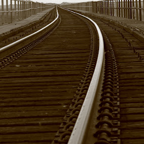 One More Crossing by Brian Robinson - Transportation Trains