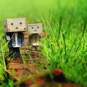 DANBO by Ricky Amsal - Artistic Objects Toys
