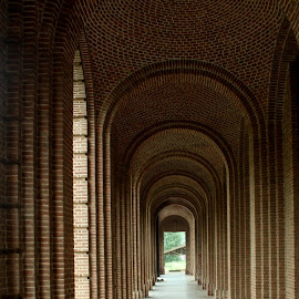 Forest Research Institute by Parakram Mishra - Buildings & Architecture Public & Historical ( colonial architecture, forest research institute, corridor, india, dehradun )