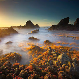 Sunset by Budiman Cengko - Landscapes Waterscapes ( water, sunset, wave, sea, rocks )