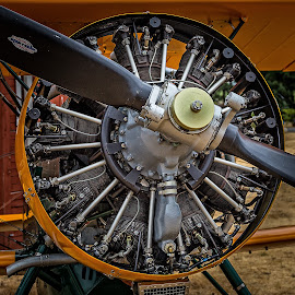 More Round-Engine Fun by Ronald Mullins - Transportation Airplanes ( flight, flying, airplanes, aircraft, aircraft engine, round engines )