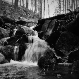 mountain creek by Son G - Black & White Landscapes ( mountains, nature, black and white, forest, landscape )