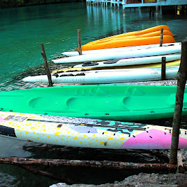 What's SUP? by Lois Caronongan - Artistic Objects Toys ( standupboards, surigao, fun, memories, old photos, philippines, canoes )