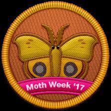 Moth Week 2017
