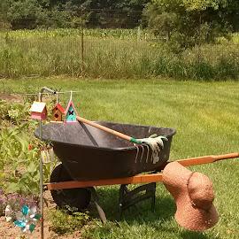 Enjoying Gardening  by Tina French - Artistic Objects Still Life (  )