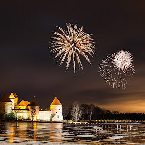 Trakai castle by Donatas Zasciurinskas - Travel Locations Landmarks ( trakai, winter, castle, lithuania )