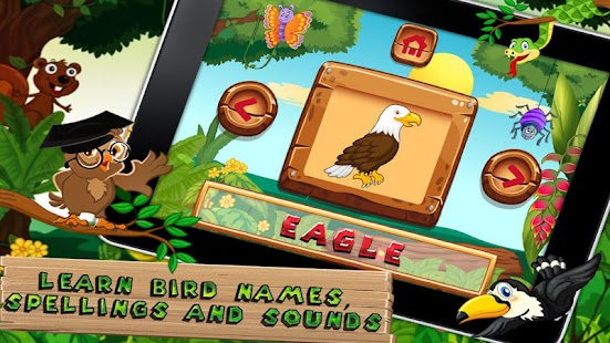 Which Bird - Kids e-learning - screenshot