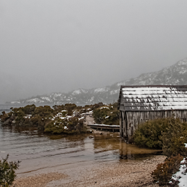 cold and wet by Vibeke Friis - Landscapes Weather ( tasmania, cradle mountain, fog, snow, lake walk )