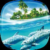 Live Hintergrundbilder Delfine 🐬 Schöne Bilder